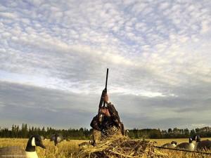 goose_shooting