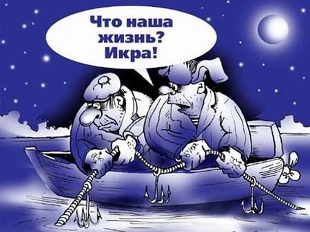 chto_nasha_zhizn_ikra